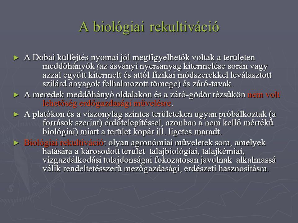 A biológiai rekultiváció ► A Dobai külfejtés nyomai jól megfigyelhetők voltak a területen meddőhányók (az ásványi nyersanyag kitermelése során vagy az