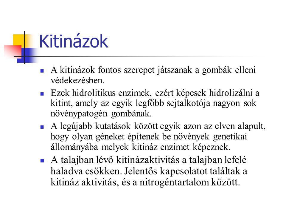A módszer alapelve Kitin szuszpenziót tartalmazó talajmintát inkubálnak 16 órán keresztül 37°C-on.