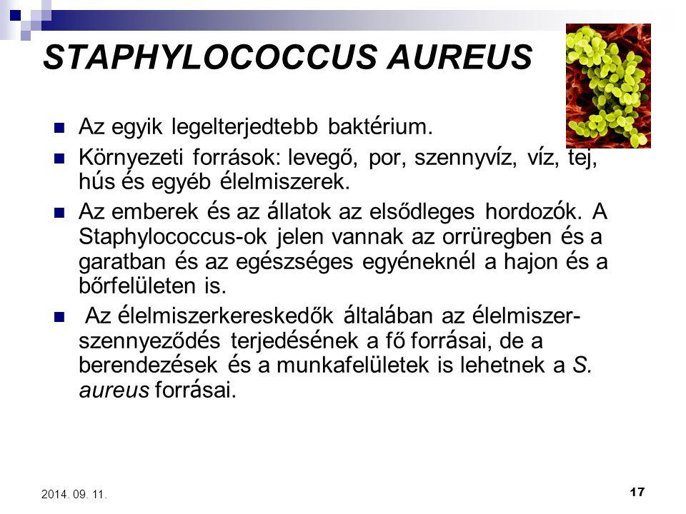 17 2014. 09. 11. STAPHYLOCOCCUS AUREUS Az egyik legelterjedtebb bakt é rium. Környezeti források: levegő, por, szennyv í z, v í z, tej, h ú s é s egyé