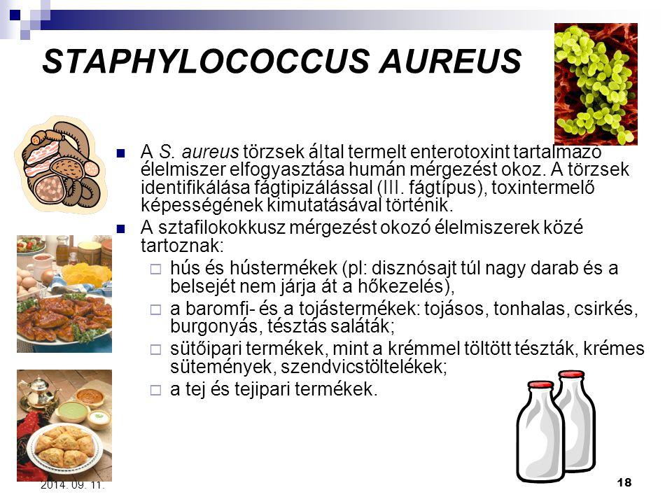 18 2014. 09. 11. STAPHYLOCOCCUS AUREUS A S. aureus t ö rzsek á Ital termelt enterotoxint tartalmaz ó é lelmiszer elfogyaszt á sa hum á n m é rgez é st