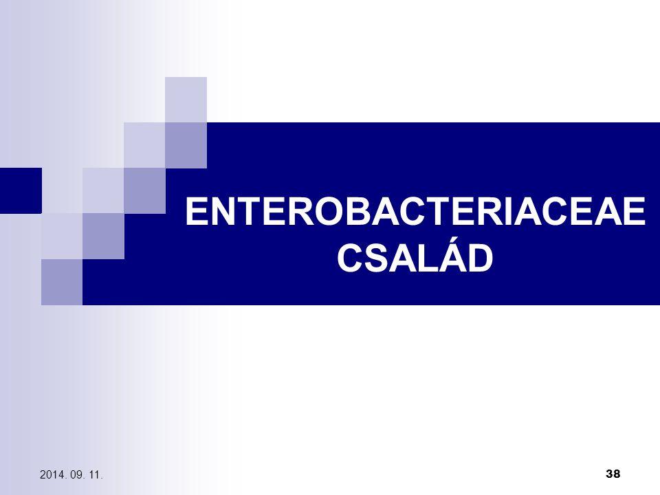 2014. 09. 11. 38 ENTEROBACTERIACEAE CSALÁD