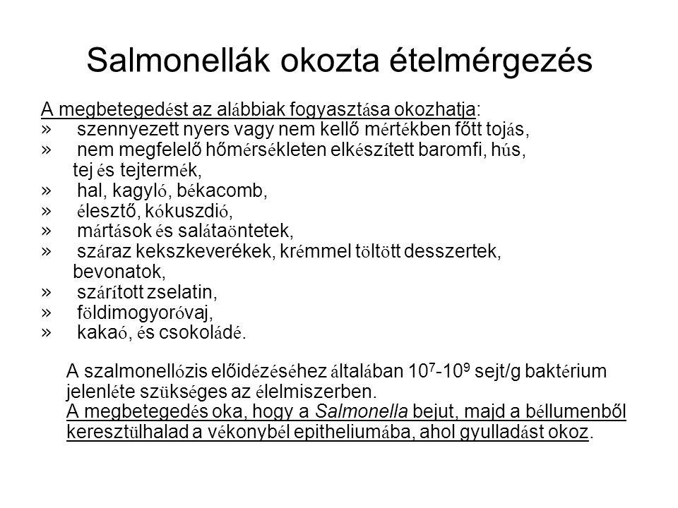 Salmonellák okozta ételmérgezés A megbeteged é st az al á bbiak fogyaszt á sa okozhatja: » szennyezett nyers vagy nem kellő m é rt é kben főtt toj á s