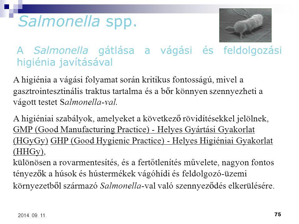 75 2014. 09. 11. Salmonella spp. A Salmonella gátlása a vágási és feldolgozási higiénia javításával A higiénia a vágási folyamat során kritikus fontos
