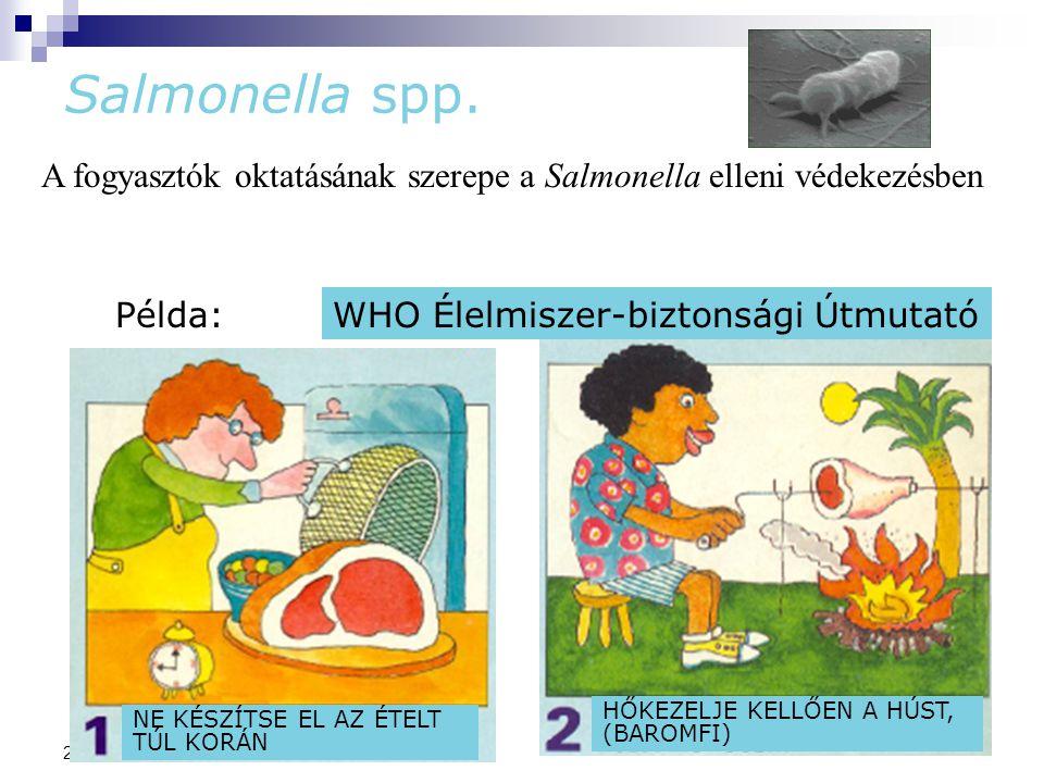 78 2014. 09. 11. Salmonella spp. A fogyasztók oktatásának szerepe a Salmonella elleni védekezésben Példa:WHO Élelmiszer-biztonsági Útmutató NE KÉSZÍTS