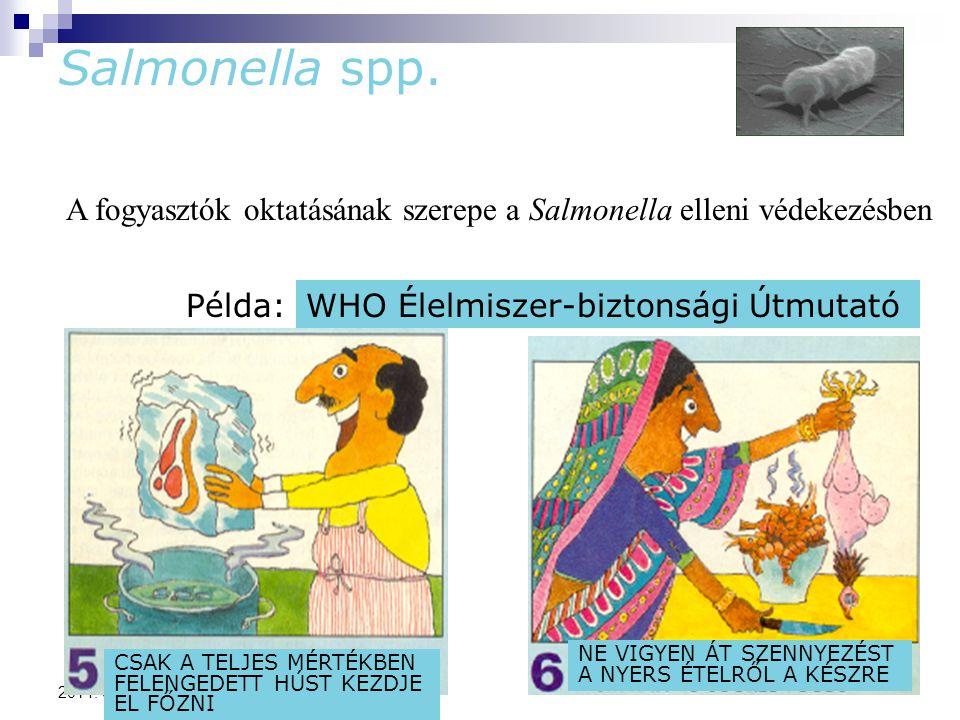 80 2014. 09. 11. Salmonella spp. A fogyasztók oktatásának szerepe a Salmonella elleni védekezésben Példa:WHO Élelmiszer-biztonsági Útmutató CSAK A TEL
