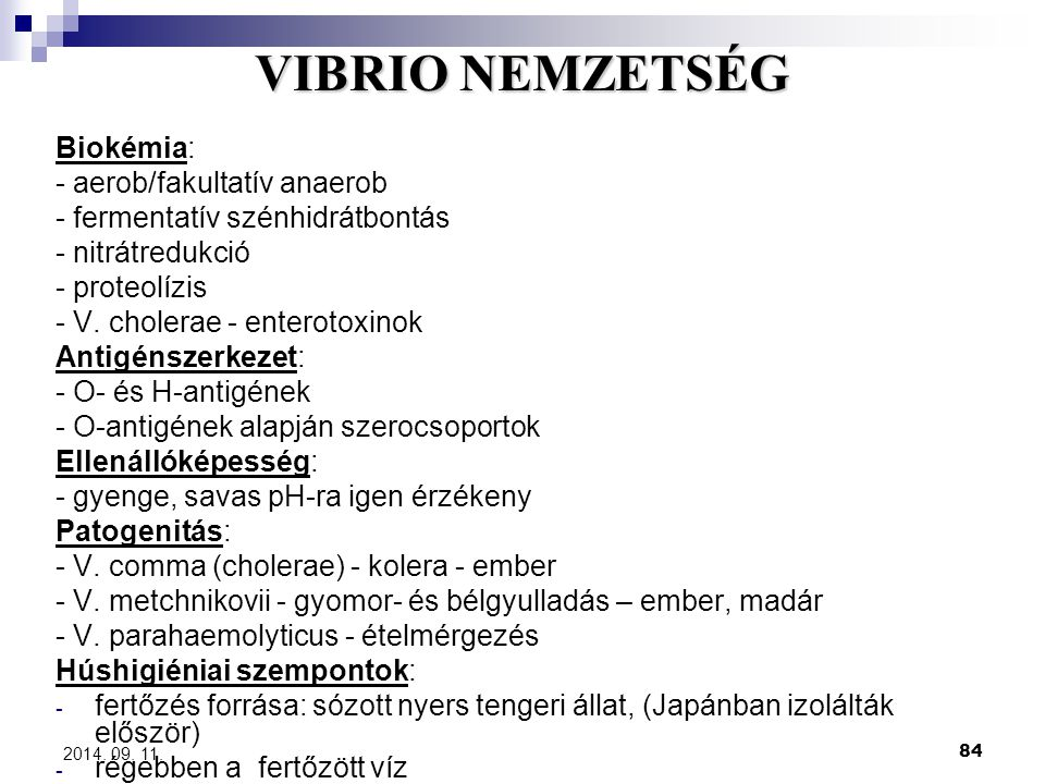 84 2014. 09. 11. Biokémia: - aerob/fakultatív anaerob - fermentatív szénhidrátbontás - nitrátredukció - proteolízis - V. cholerae - enterotoxinok Anti