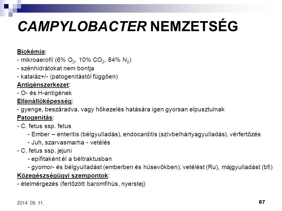 87 2014. 09. 11. CAMPYLOBACTER NEMZETSÉG Biokémia: - mikroaerofil (6% O 2, 10% CO 2, 84% N 2 ) - szénhidrátokat nem bontja - kataláz+/- (patogenitástó