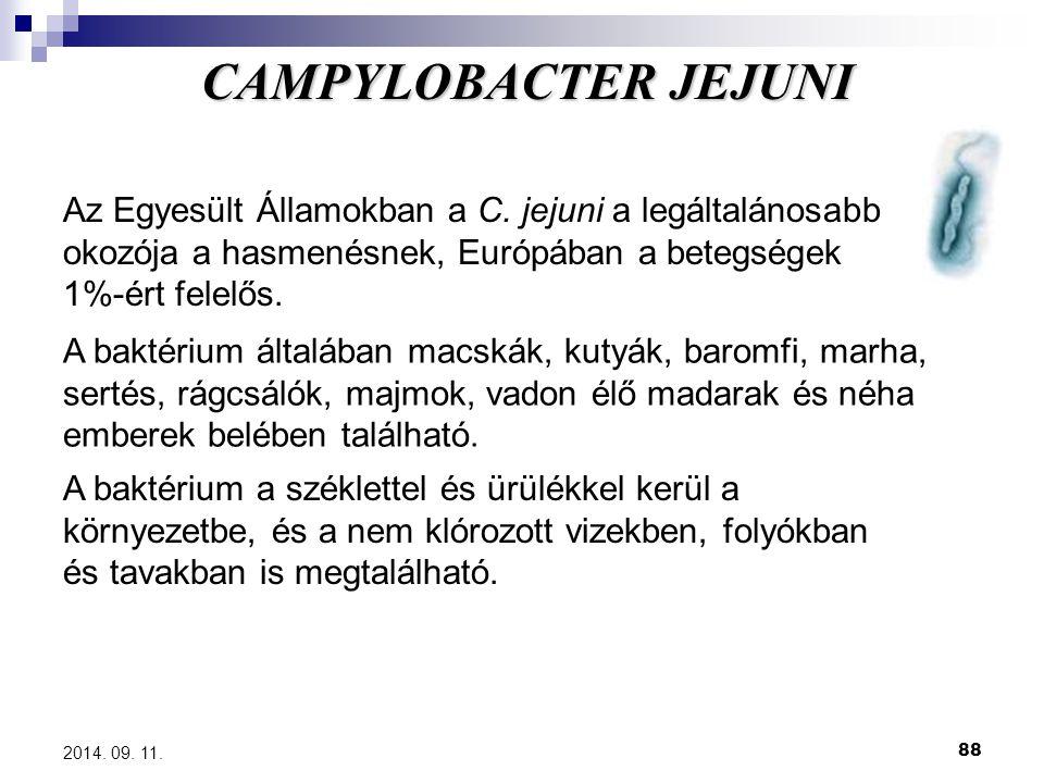 88 2014. 09. 11. Az Egyesült Államokban a C. jejuni a legáltalánosabb okozója a hasmenésnek, Európában a betegségek 1%-ért felelős. A baktérium általá