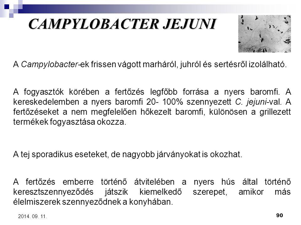 90 2014. 09. 11. CAMPYLOBACTER JEJUNI A Campylobacter-ek frissen vágott marháról, juhról és sertésről izolálható. A fogyasztók körében a fertőzés legf