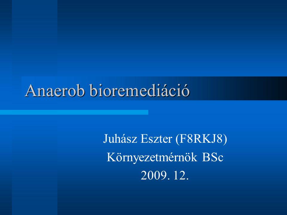 Anaerob bioremediáció Juhász Eszter (F8RKJ8) Környezetmérnök BSc 2009. 12.