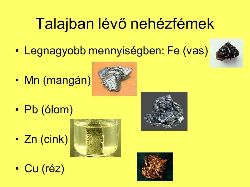 Talajban lévő nehézfémek Legnagyobb mennyiségben: Fe (vas) Mn (mangán) Pb (ólom) Zn (cink) Cu (réz)