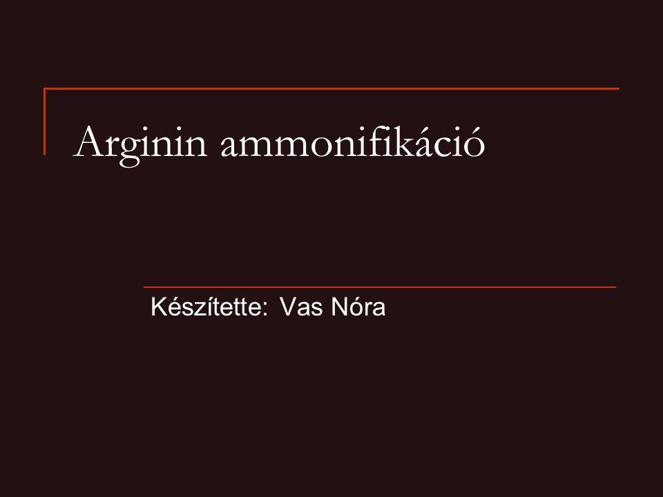 Arginin ammonifikáció Készítette: Vas Nóra