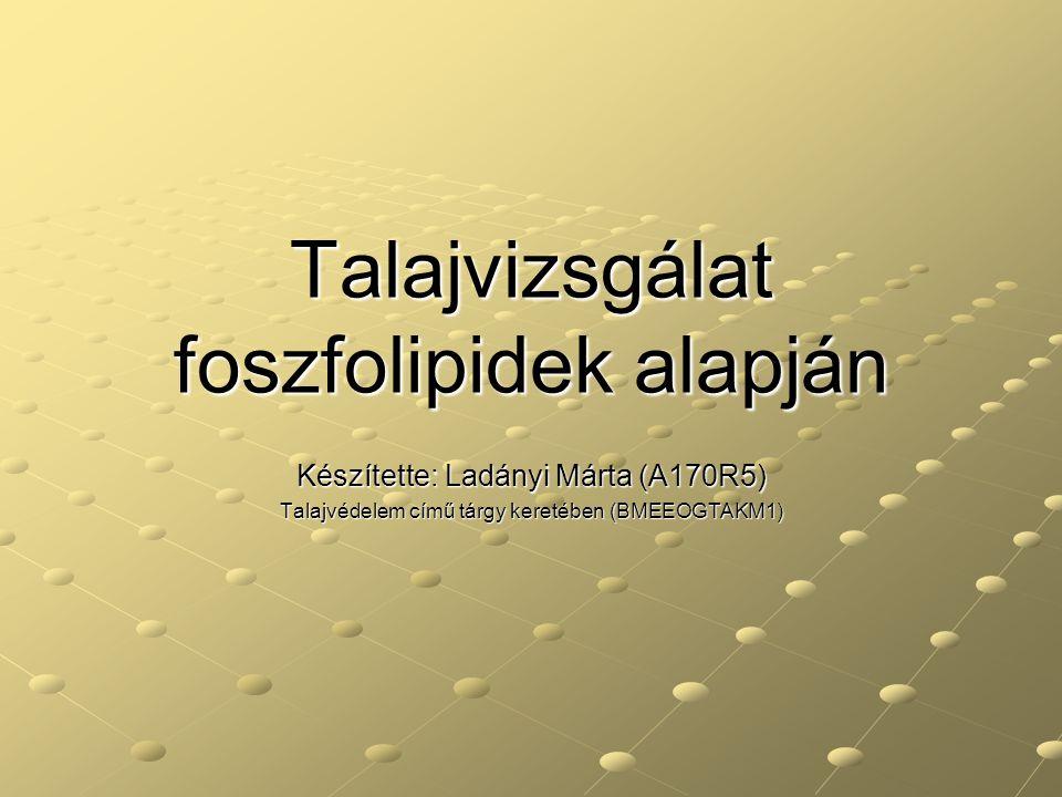 Talajvizsgálat foszfolipidek alapján Készítette: Ladányi Márta (A170R5) Talajvédelem című tárgy keretében (BMEEOGTAKM1)