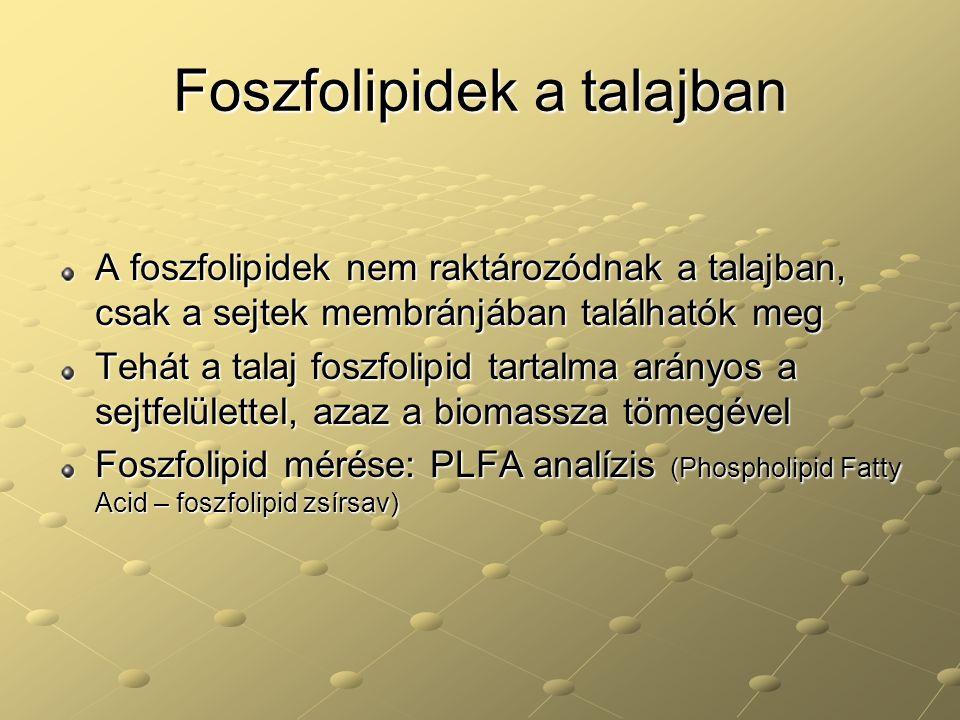 Foszfolipidek a talajban A foszfolipidek nem raktározódnak a talajban, csak a sejtek membránjában találhatók meg Tehát a talaj foszfolipid tartalma ar