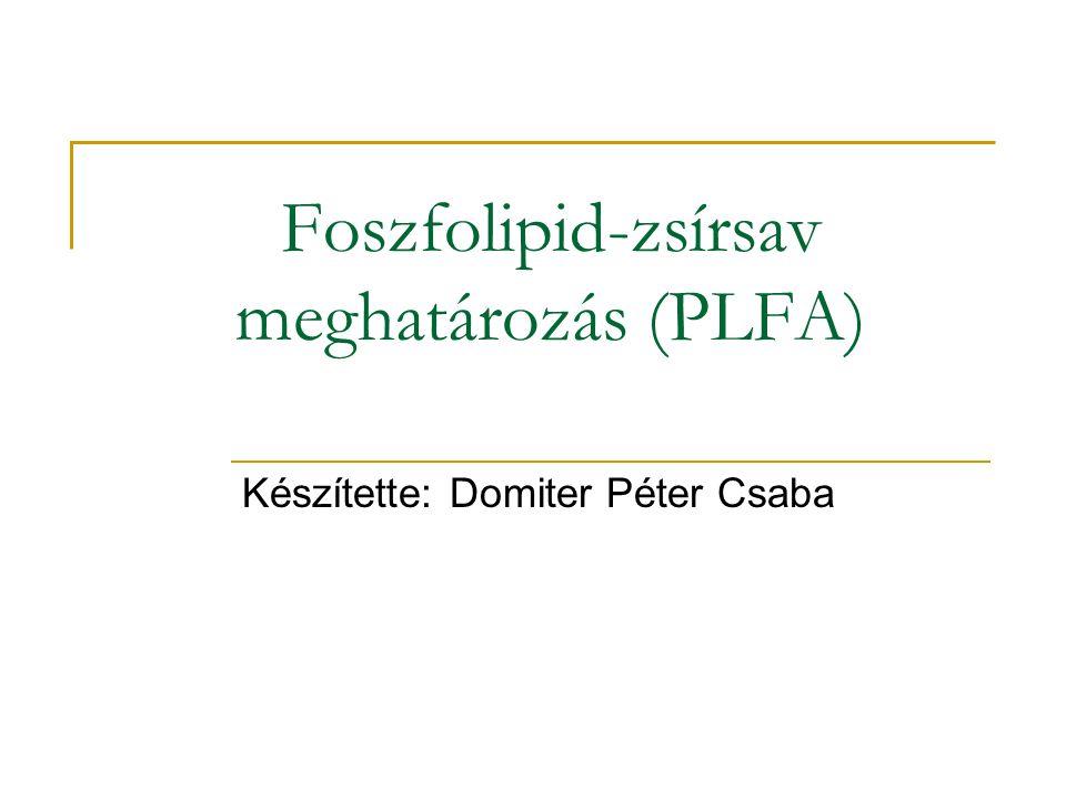 Foszfolipid-zsírsav meghatározás (PLFA) Készítette: Domiter Péter Csaba