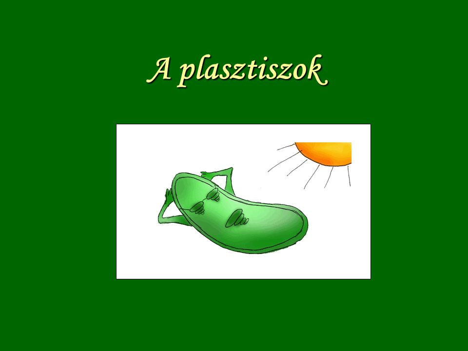 A plasztiszok