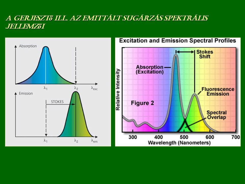 Primer fluoreszcencia = Autofluoreszcencia
