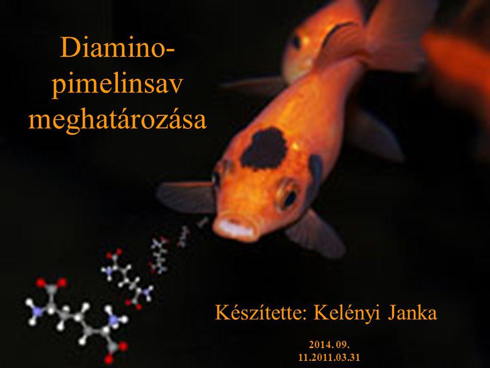 2014.09. 11. Kelényi Janka2 Diamino-pimelinsav (DAP) Diaminosavak csoportjába tartozik.