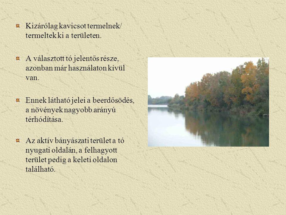 Kizárólag kavicsot termelnek/ termeltek ki a területen. A választott tó jelentős része, azonban már használaton kívül van. Ennek látható jelei a beerd