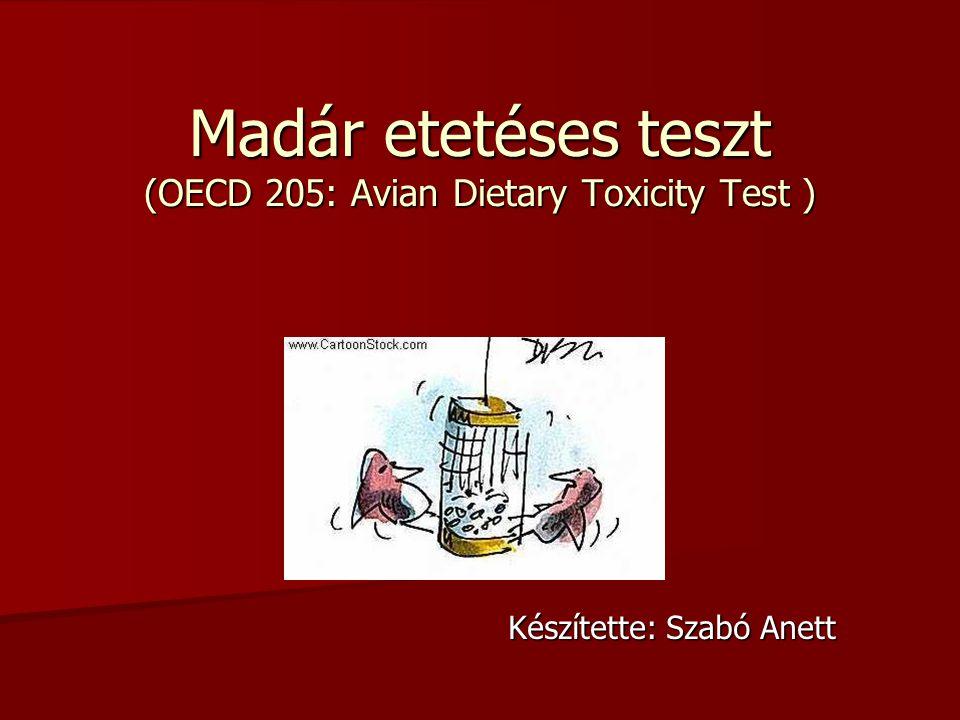 Madár etetéses teszt (OECD 205: Avian Dietary Toxicity Test ) Készítette: Szabó Anett