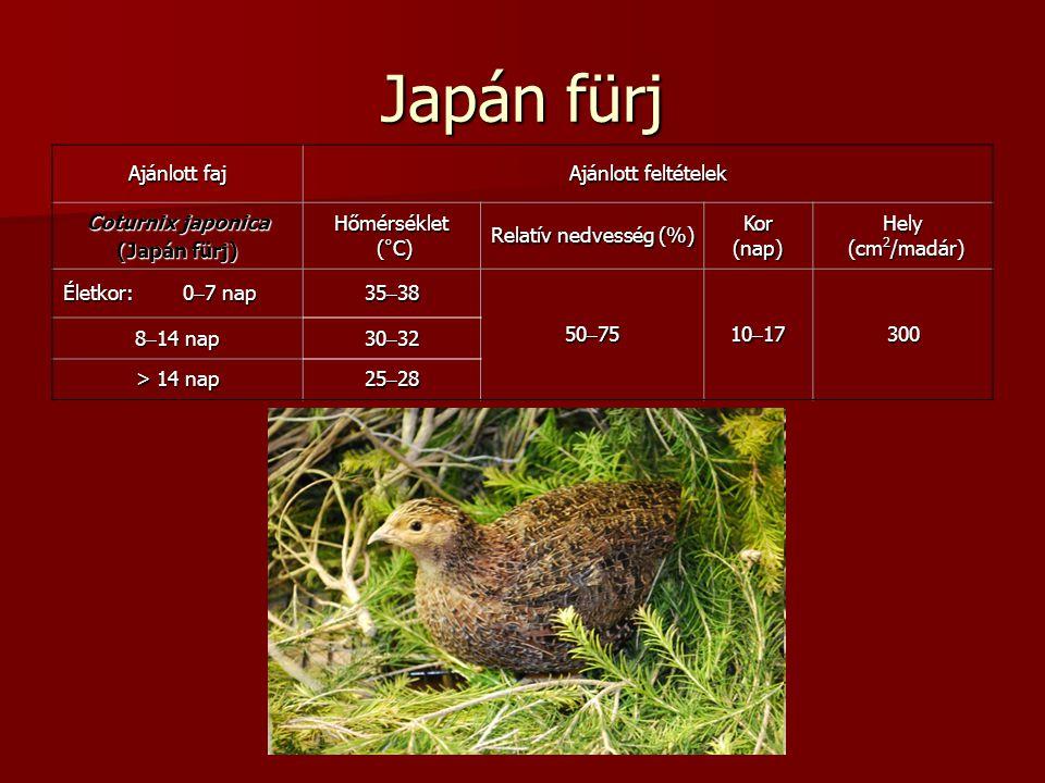 Japán fürj Ajánlott faj Ajánlott feltételek Coturnix japonica (Japán fürj) Hőmérséklet (°C) (°C) Relatív nedvesség (%) Kor(nap)Hely (cm 2 /madár) (cm 2 /madár) Életkor: 0  7 nap 35  38 50  75 10  17 300 8  14 nap 30  32 > 14 nap 25  28