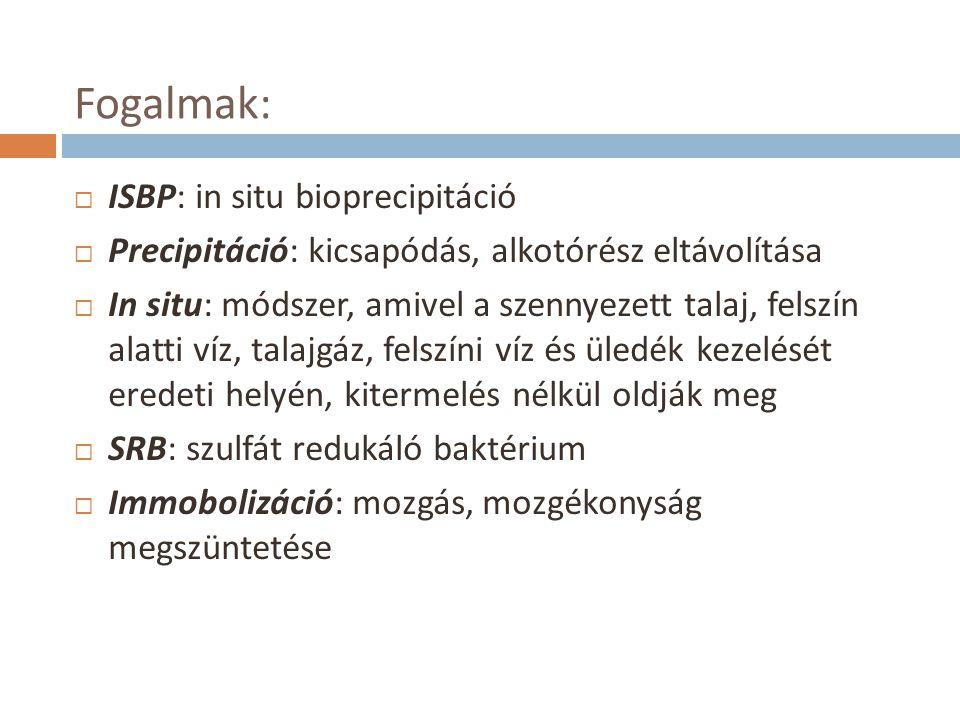 Fogalmak:  ISBP: in situ bioprecipitáció  Precipitáció: kicsapódás, alkotórész eltávolítása  In situ: módszer, amivel a szennyezett talaj, felszín alatti víz, talajgáz, felszíni víz és üledék kezelését eredeti helyén, kitermelés nélkül oldják meg  SRB: szulfát redukáló baktérium  Immobolizáció: mozgás, mozgékonyság megszüntetése