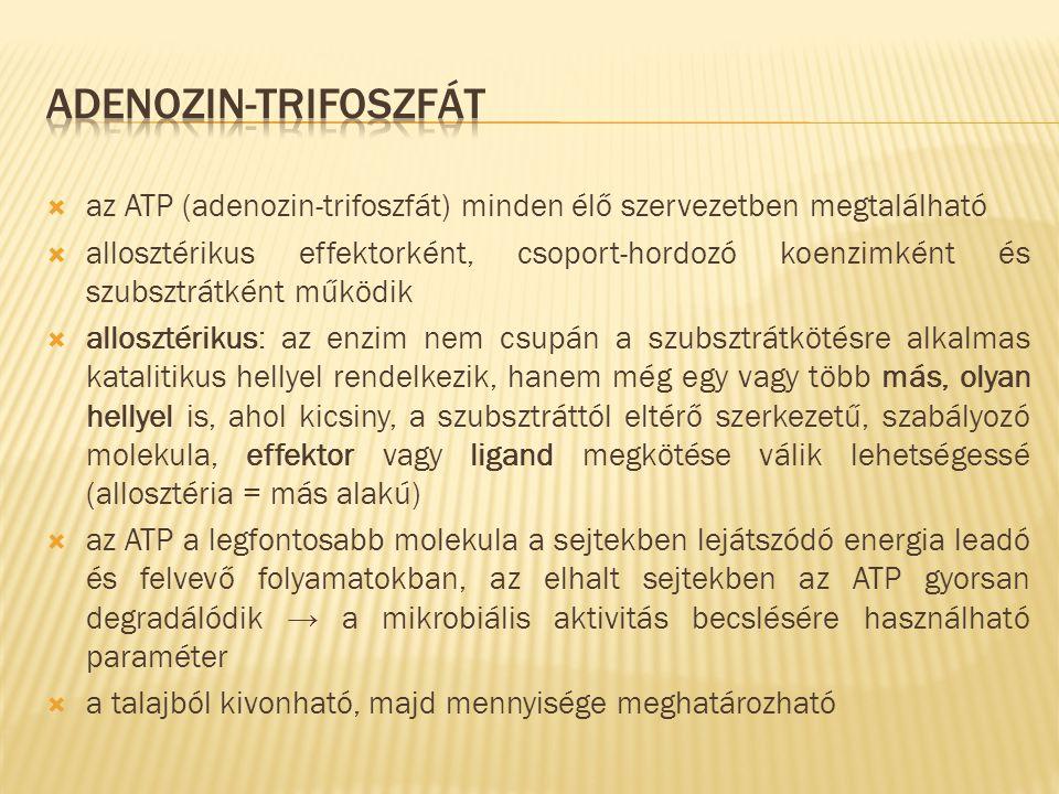  az ATP (adenozin-trifoszfát) minden élő szervezetben megtalálható  allosztérikus effektorként, csoport-hordozó koenzimként és szubsztrátként működi
