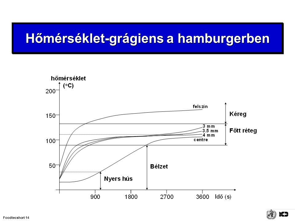 Foodtecshort 14 Hőmérséklet-grágiens a hamburgerben