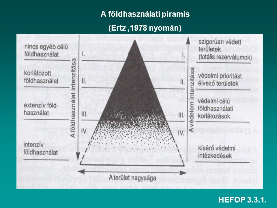HEFOP 3.3.1. A földhasználati piramis (Ertz,1978 nyomán)