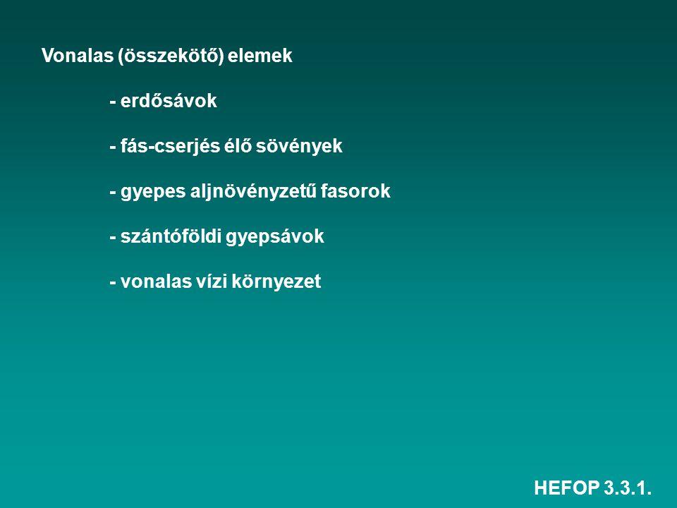 HEFOP 3.3.1. Vonalas (összekötő) elemek - erdősávok - fás-cserjés élő sövények - gyepes aljnövényzetű fasorok - szántóföldi gyepsávok - vonalas vízi k
