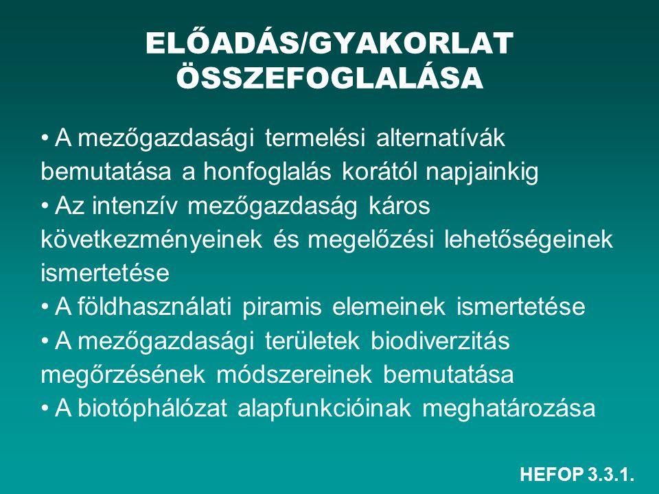 HEFOP 3.3.1. ELŐADÁS/GYAKORLAT ÖSSZEFOGLALÁSA A mezőgazdasági termelési alternatívák bemutatása a honfoglalás korától napjainkig Az intenzív mezőgazda