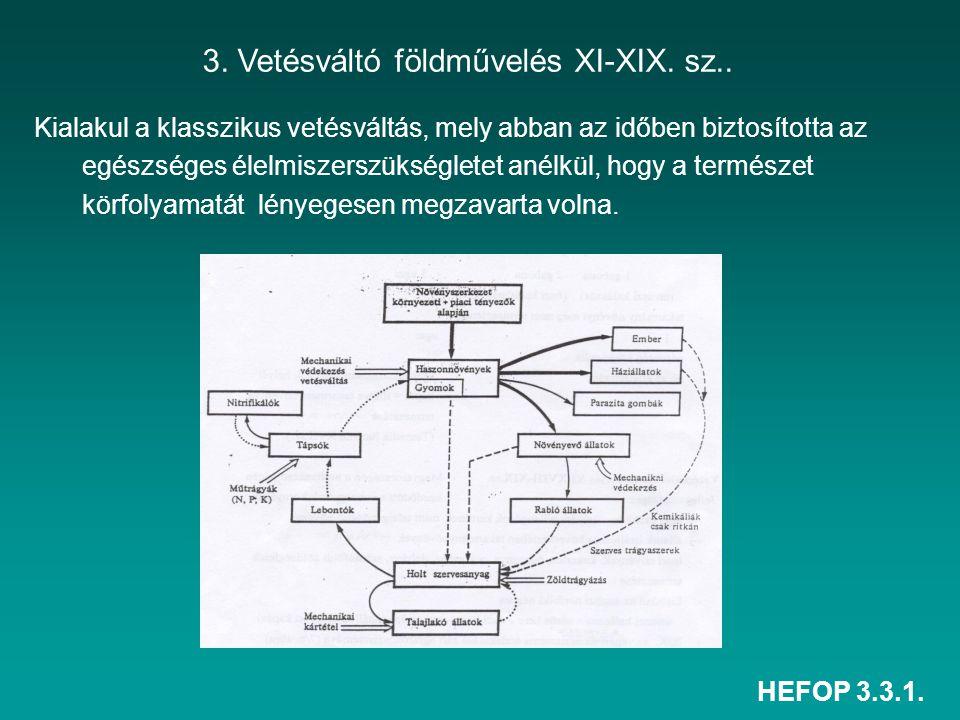 HEFOP 3.3.1. Kialakul a klasszikus vetésváltás, mely abban az időben biztosította az egészséges élelmiszerszükségletet anélkül, hogy a természet körfo