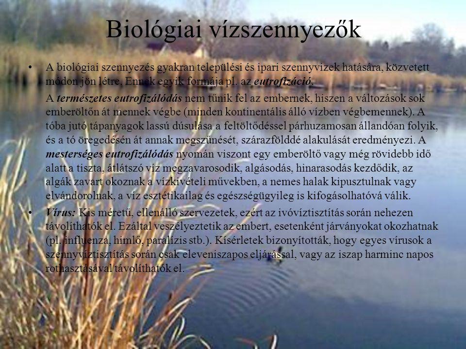 Biológiai vízszennyezők A biológiai szennyezés gyakran települési és ipari szennyvizek hatására, közvetett módon jön létre. Ennek egyik formája pl. az