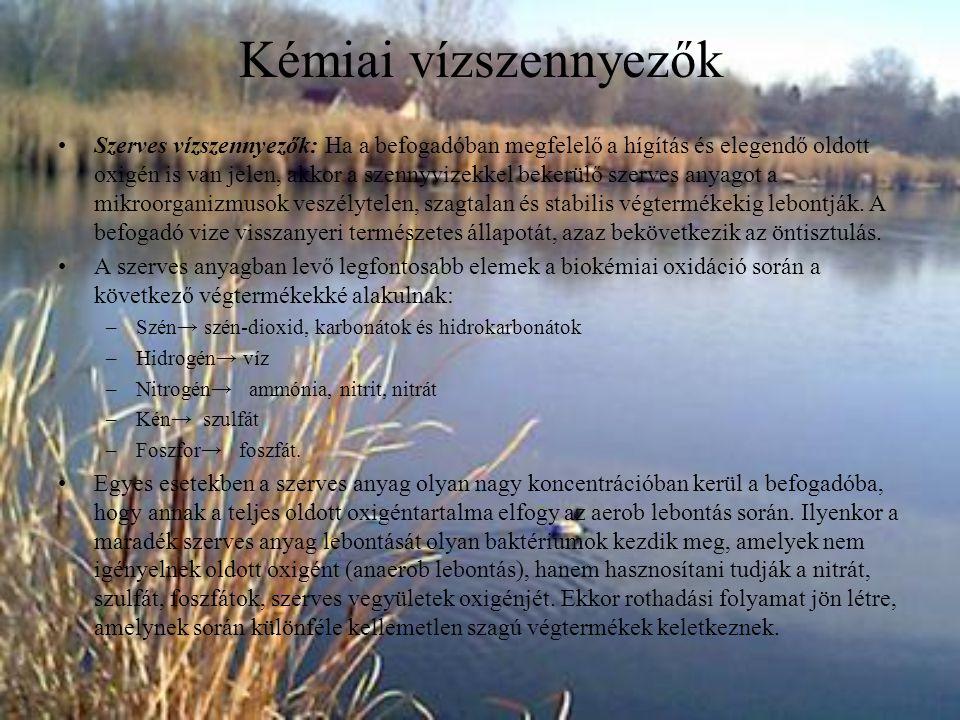 Szervetlen vízszennyezők: A szervetlen szennyezők közül leggyakrabban a savak és lúgok fordulnak elő.