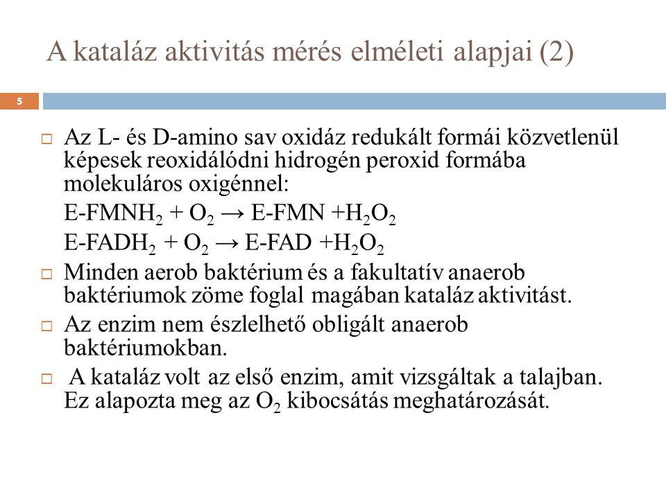  Az L- és D-amino sav oxidáz redukált formái közvetlenül képesek reoxidálódni hidrogén peroxid formába molekuláros oxigénnel: E-FMNH 2 + O 2 → E-FMN +H 2 O 2 E-FADH 2 + O 2 → E-FAD +H 2 O 2  Minden aerob baktérium és a fakultatív anaerob baktériumok zöme foglal magában kataláz aktivitást.