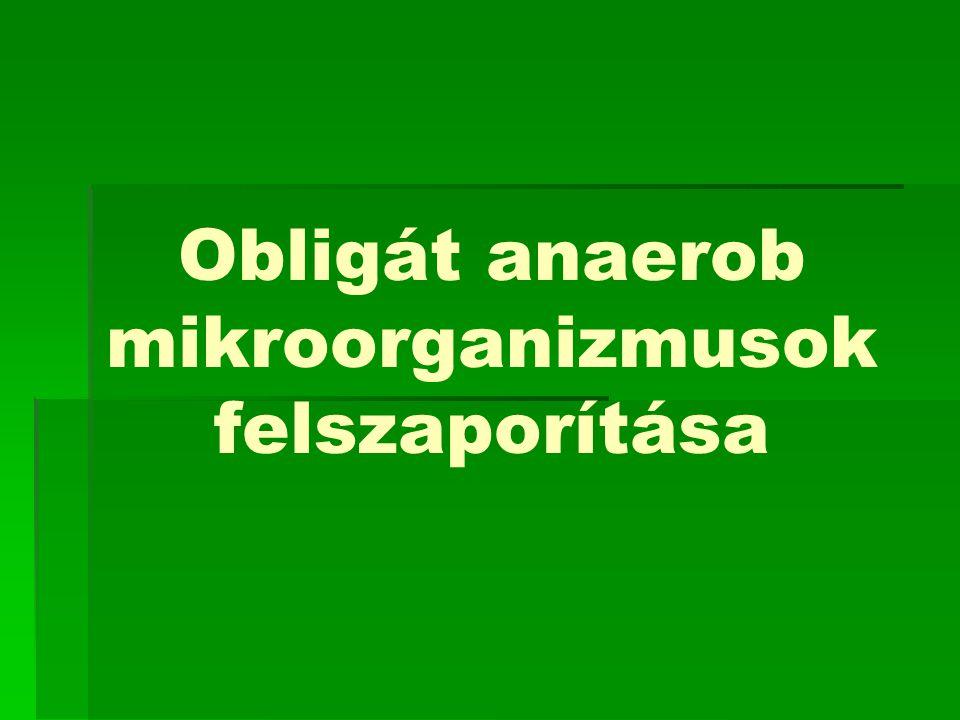Obligát anaerob mikroorganizmusok Obligát anaerobnak nevezünk egy mikroorganizmust, ha az csak anaerob viszonyok között képes létezni.
