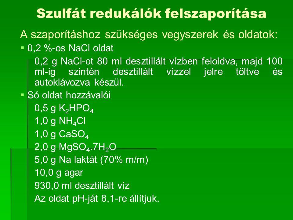 Szulfát redukálók felszaporítása A szaporításhoz szükséges vegyszerek és oldatok:   0,2 %-os NaCl oldat 0,2 g NaCl-ot 80 ml desztillált vízben feloldva, majd 100 ml-ig szintén desztillált vízzel jelre töltve és autoklávozva készül.