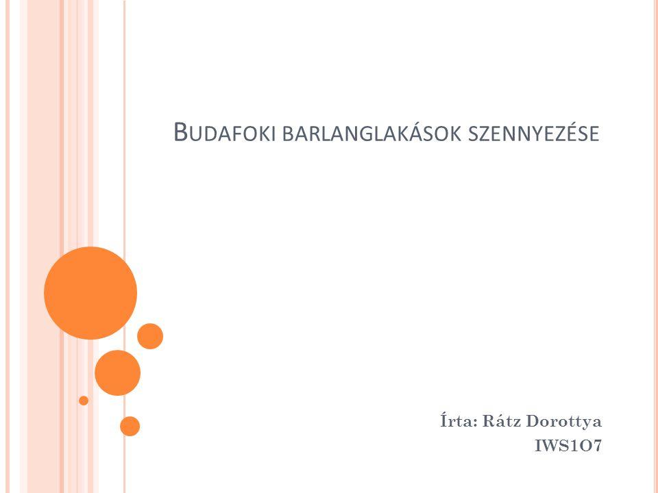 B UDAFOKI BARLANGLAKÁSOK SZENNYEZÉSE Írta: Rátz Dorottya IWS1O7