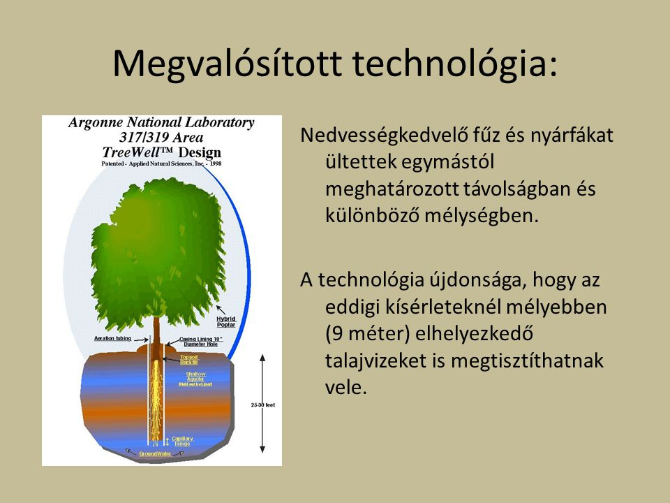 Megvalósított technológia: Nedvességkedvelő fűz és nyárfákat ültettek egymástól meghatározott távolságban és különböző mélységben. A technológia újdon