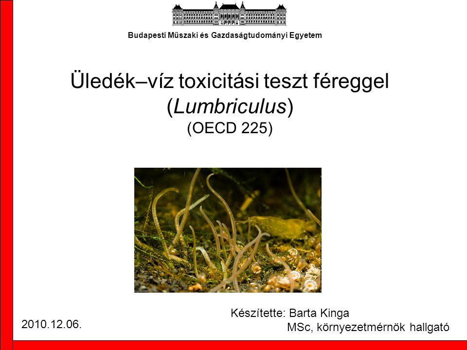 A teszt áttekintése Üledék környezettoxikológiai tesztje –cél: toxicitás mértékének meghatározása –mód: toxicitás élő állatra gyakorolt hatásának megfigyelése, a letalitás mérése élőállat eltérő koncentrációjú toxikus környezetbe helyezése –mérési végpont: állatok túlélése –környezet: különböző koncentrációban szennyezett mesterséges üledék mesterséges víz –a vizsgálat időtartalma: 28 nap