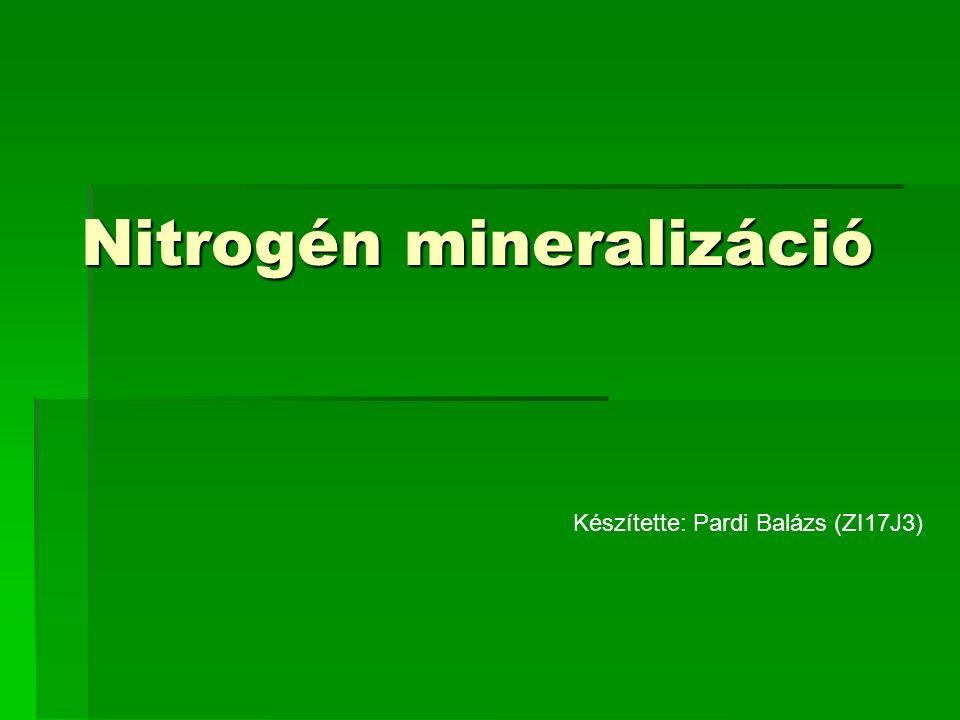 Nitrogén mineralizáció Készítette: Pardi Balázs (ZI17J3)