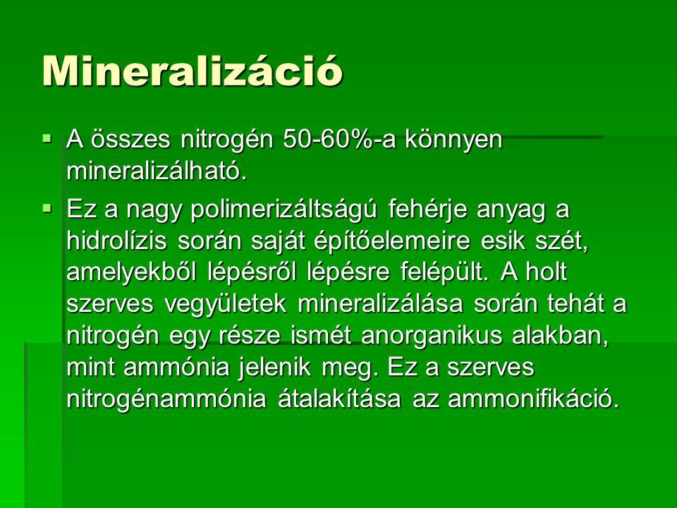 Mineralizáció  A összes nitrogén 50-60%-a könnyen mineralizálható.  Ez a nagy polimerizáltságú fehérje anyag a hidrolízis során saját építőelemeire
