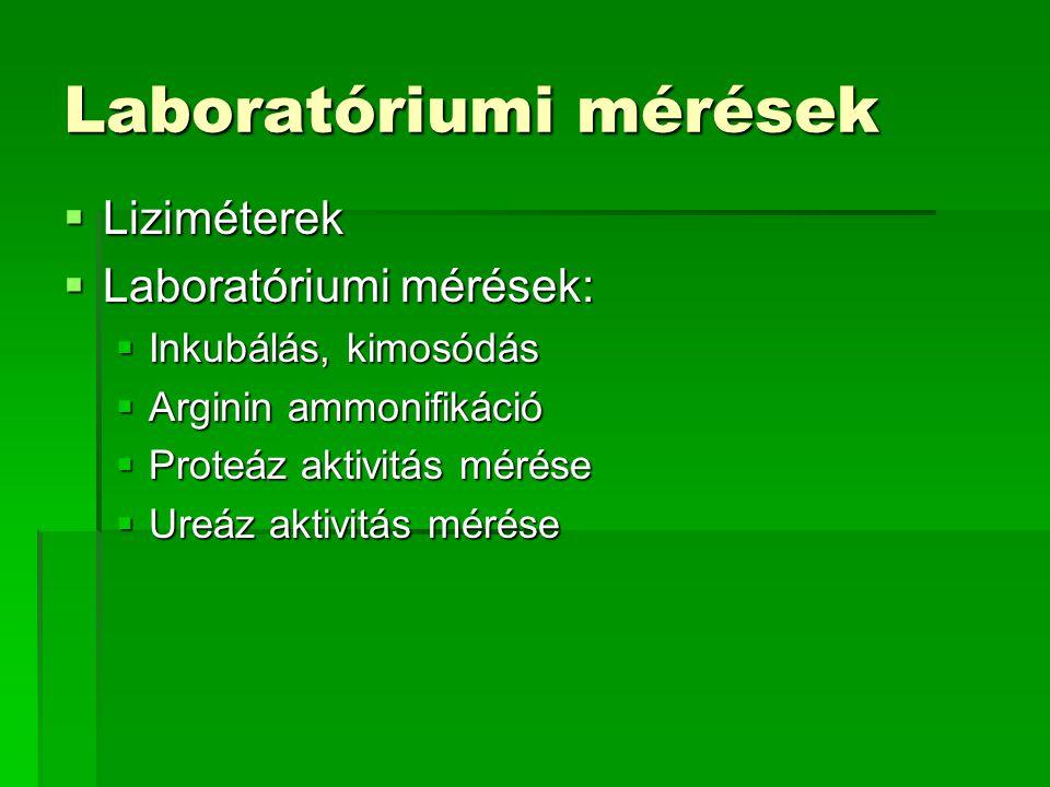 Laboratóriumi mérések  Liziméterek  Laboratóriumi mérések:  Inkubálás, kimosódás  Arginin ammonifikáció  Proteáz aktivitás mérése  Ureáz aktivit