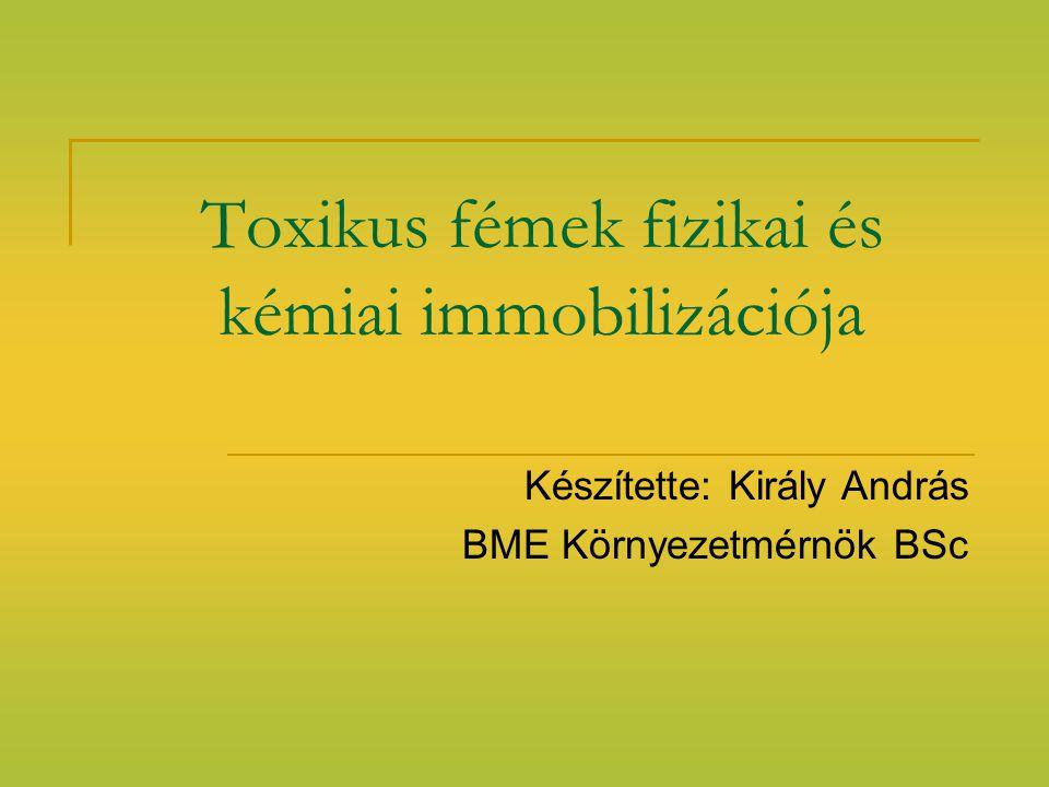 Toxikus fémek fizikai és kémiai immobilizációja Készítette: Király András BME Környezetmérnök BSc