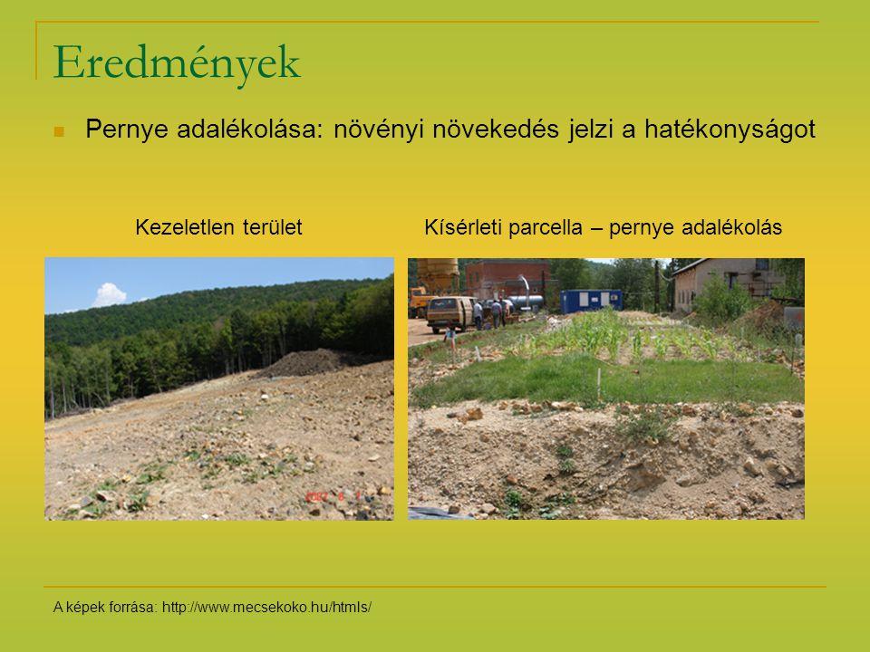 Eredmények Pernye adalékolása: növényi növekedés jelzi a hatékonyságot Kezeletlen területKísérleti parcella – pernye adalékolás A képek forrása: http: