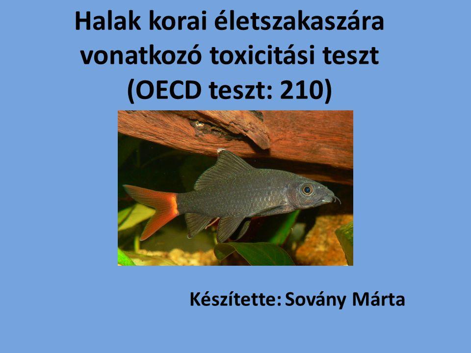 Halak korai életszakaszára vonatkozó toxicitási teszt (OECD teszt: 210) Készítette: Sovány Márta