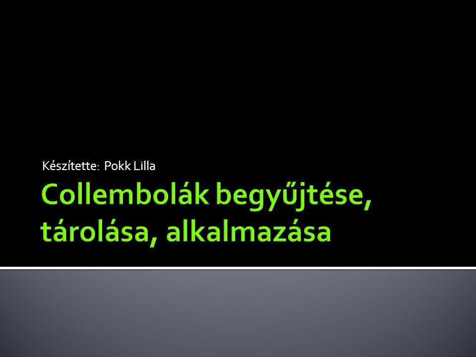  Collembolák bemutatása  Begyűjtésük  Azonosításuk  Kezelés  Élő egyedek tárolása  Alkalmazásuk  Biológiai és ökotoxikológiai módszerek