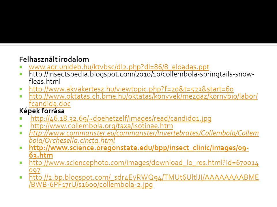 Felhasznált irodalom  www.agr.unideb.hu/ktvbsc/dl2.php?dl=86/8_eloadas.ppt www.agr.unideb.hu/ktvbsc/dl2.php?dl=86/8_eloadas.ppt  http://insectspedia