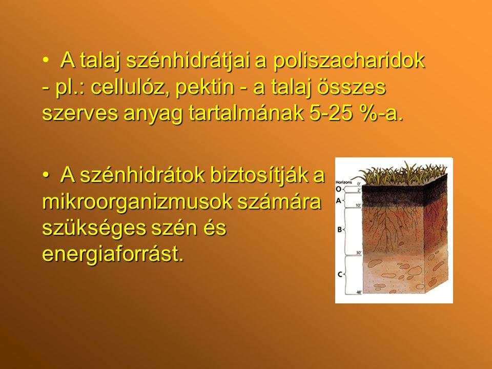 A talaj szénhidrátjai a poliszacharidok - pl.: cellulóz, pektin - a talaj összes szerves anyag tartalmának 5-25 %-a.