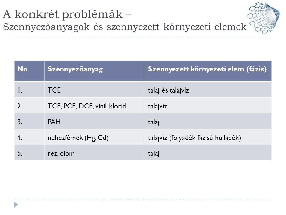 A konkrét problémák – Szennyezőanyagok és szennyezett környezeti elemek NoSzennyezőanyagSzennyezett környezeti elem (fázis) 1.TCEtalaj és talajvíz 2.T